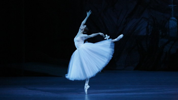 Популярные и классические виды танцев