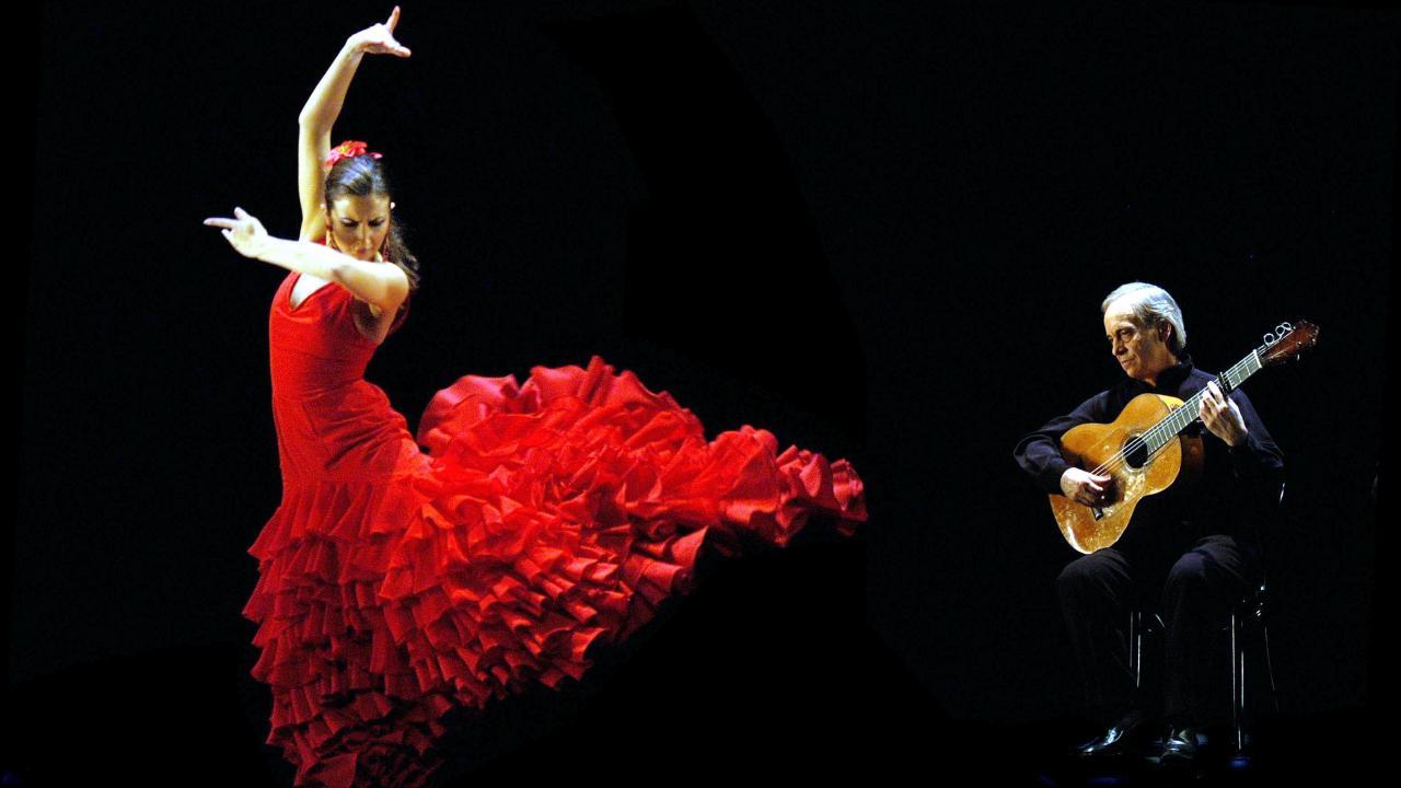 Энциклопедия танца: Фламенко