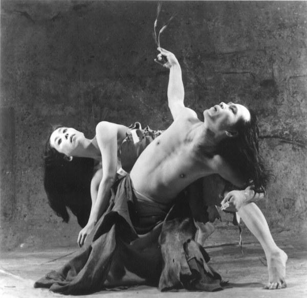 Искусство танца: балет